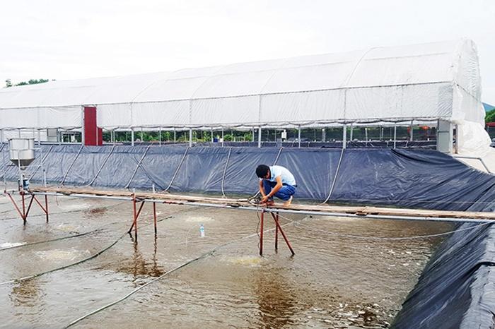 Bài toán thiếu lao động kỹ thuật ngành nuôi trồng thủy sản