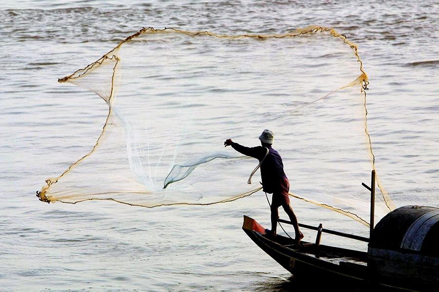 """Nghề cá sông Mekong trước nguy cơ """"tuyệt chủng"""""""