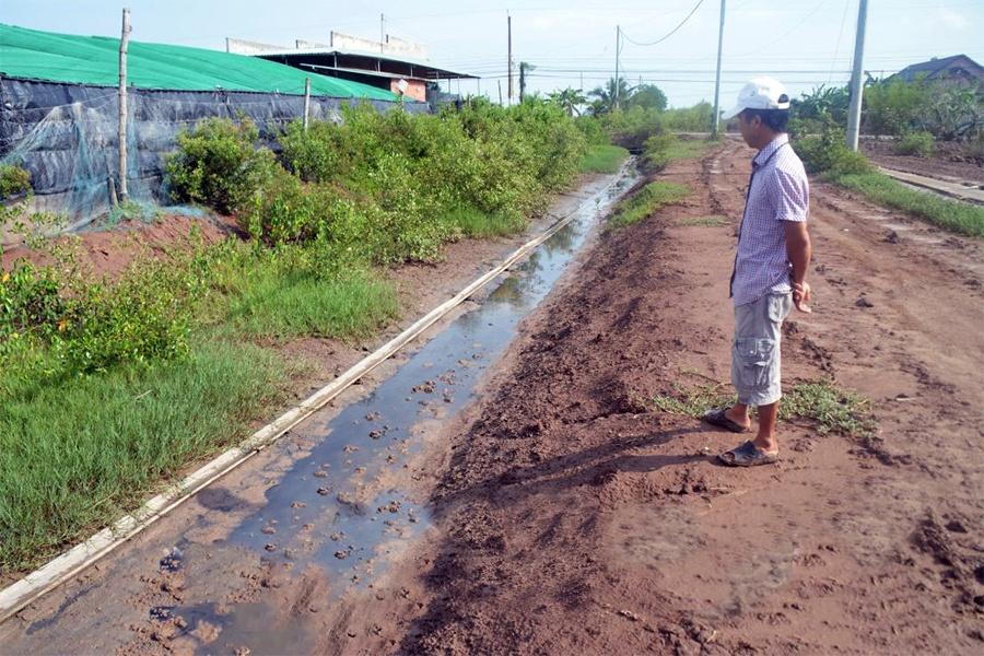 Bạc Liêu: Xử lý triệt để các hành vi nuôi tôm xả thải ra môi trường