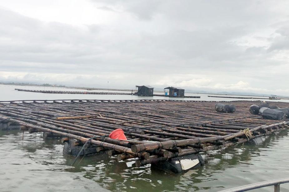 lấn chiếm bãi triều ở Vạn Ninh: Bao giờ mới dứt điểm?