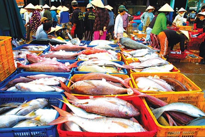 Sản lượng hải sản nhiều, dù cuối vụ cá nam