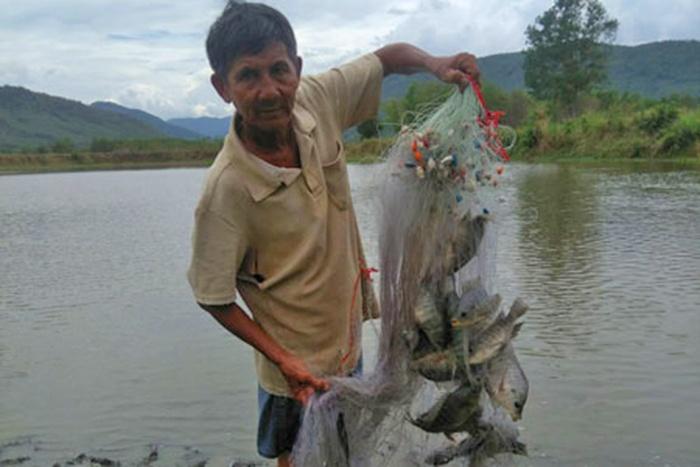Nông dân đồng hành cũng nhau nuôi cá