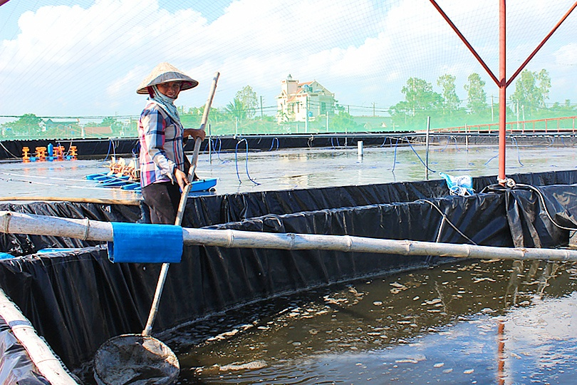 Đổi thay vùng nuôi thuỷ sản tập trung ở Xuân Hoà
