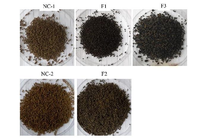 Tiềm năng thức ăn có chứa melanin bảo vệ tôm thẻ khỏi virus WSSV