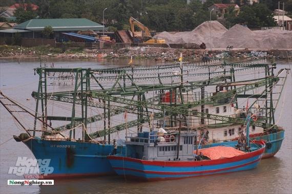 Thành lập văn phòng kiểm soát nghề cá tại Cảng Cửa Việt