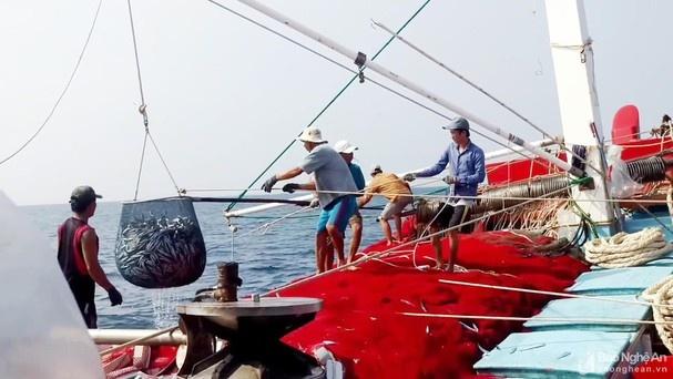 Đánh bắt cá