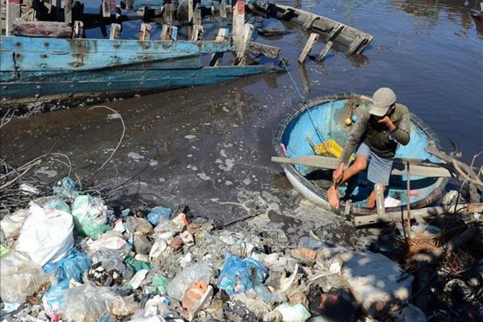 Cảng cá ô nhiễm