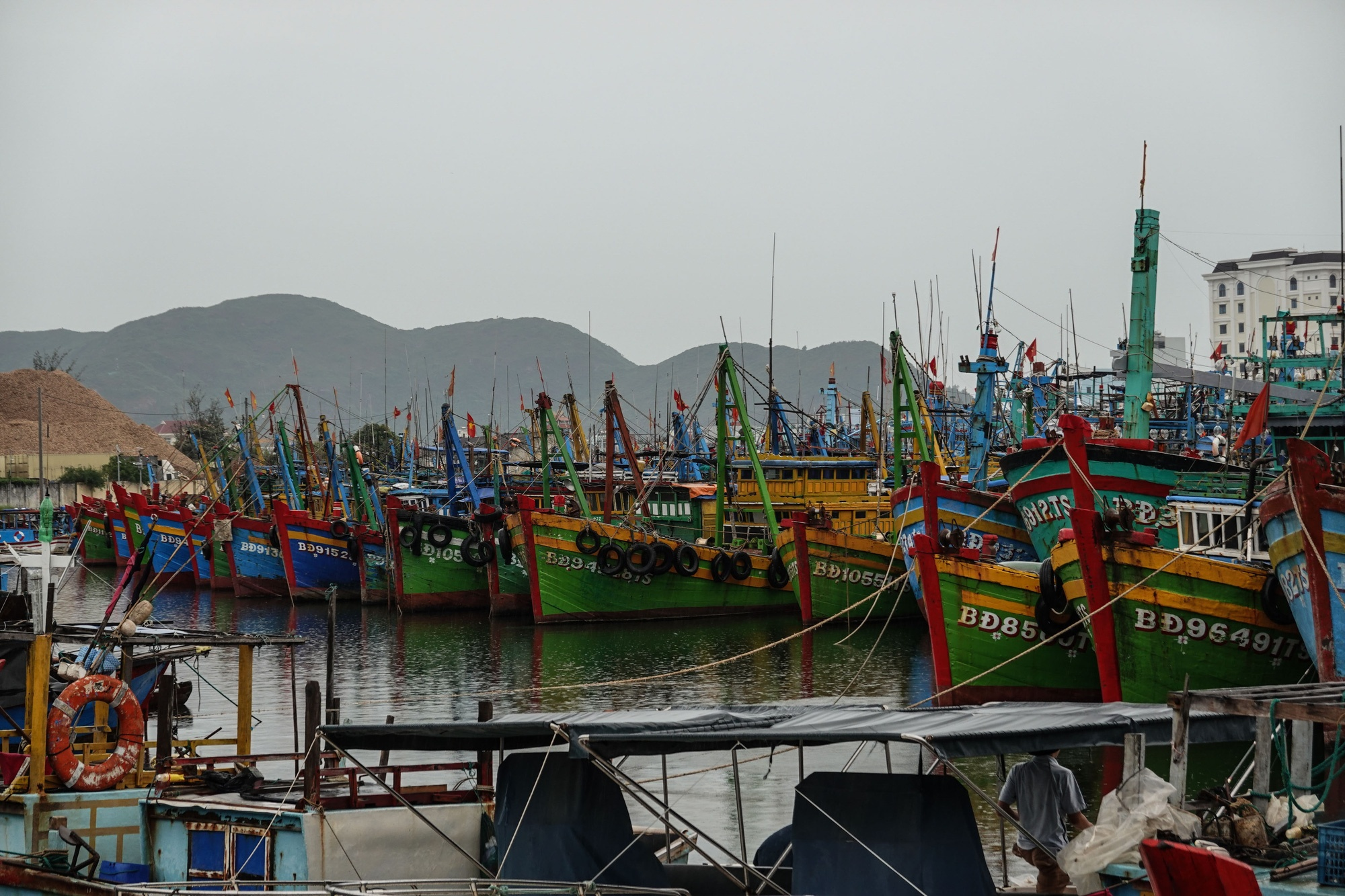 Thuyền cá tránh trú bão