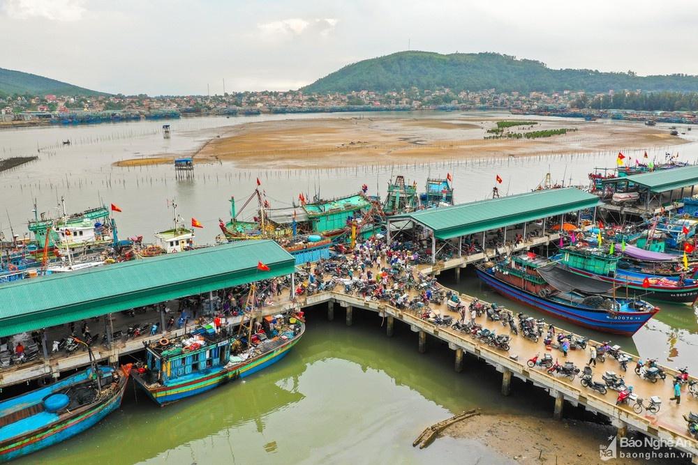 bến cá mới Quỳnh Phương