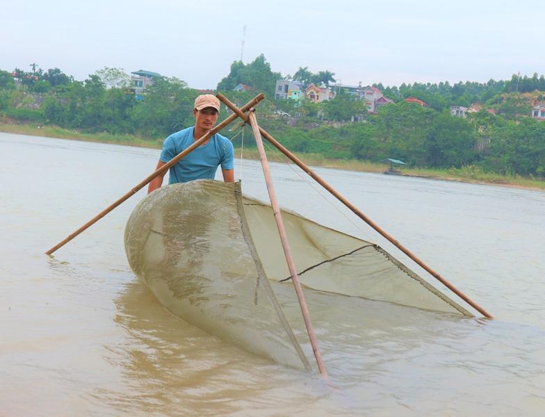 Cá bống sông Lô