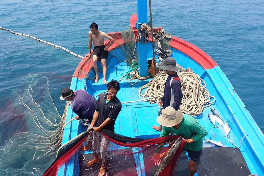 Khai thác thủy hải sản