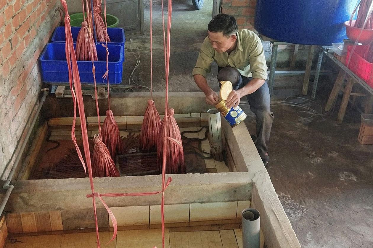 cho lươn ăn