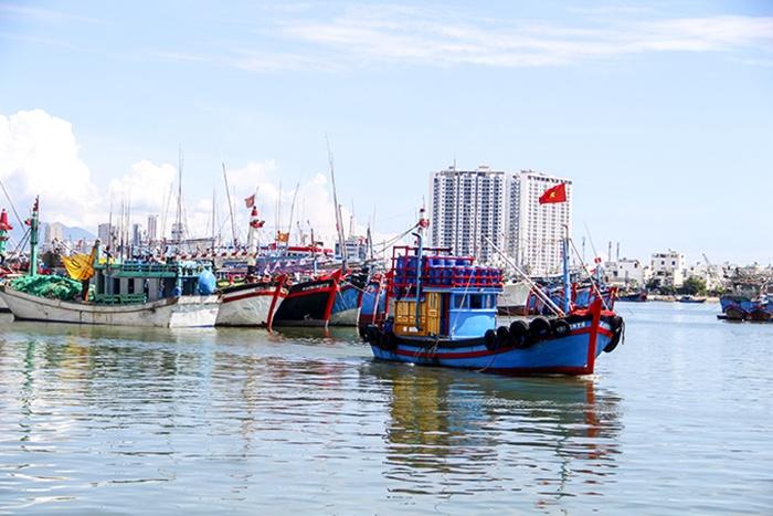 Tàu cá neo đậu