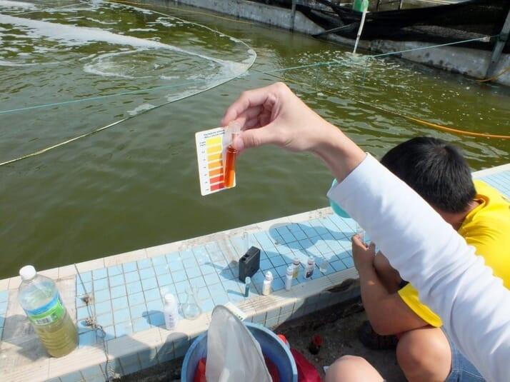 đo nước nuôi tôm
