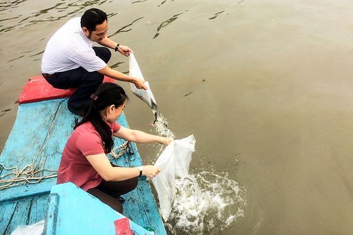 Thả cá về thiên nhiên