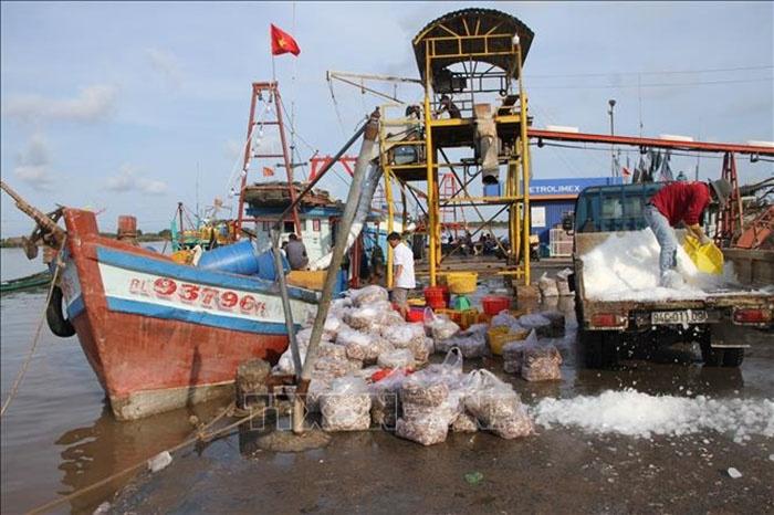 Một góc Khu neo đậu tàu thuyền tại cảng Gành Hào (huyện Đông Hải).