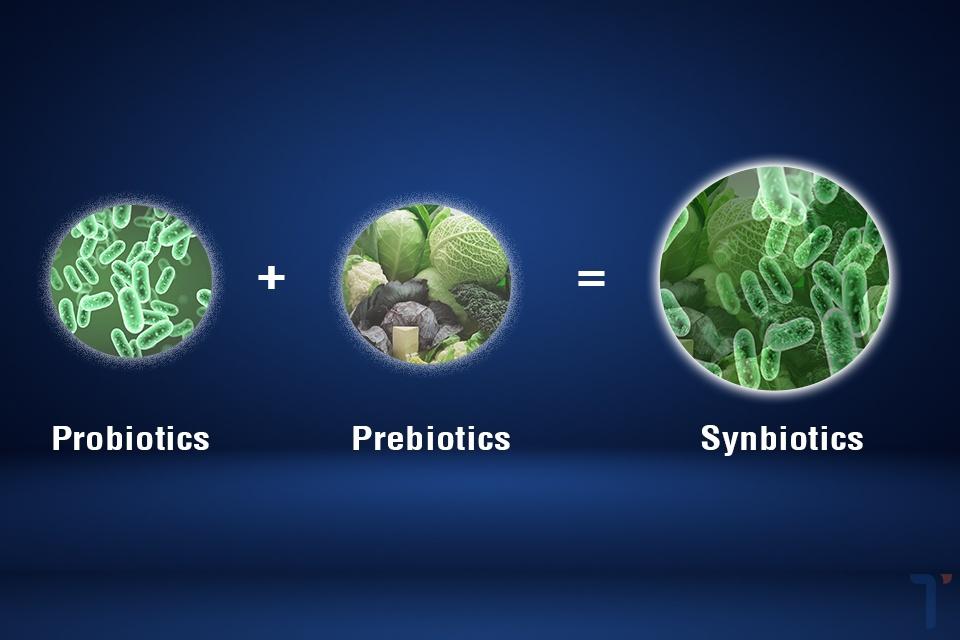 Synbiotics