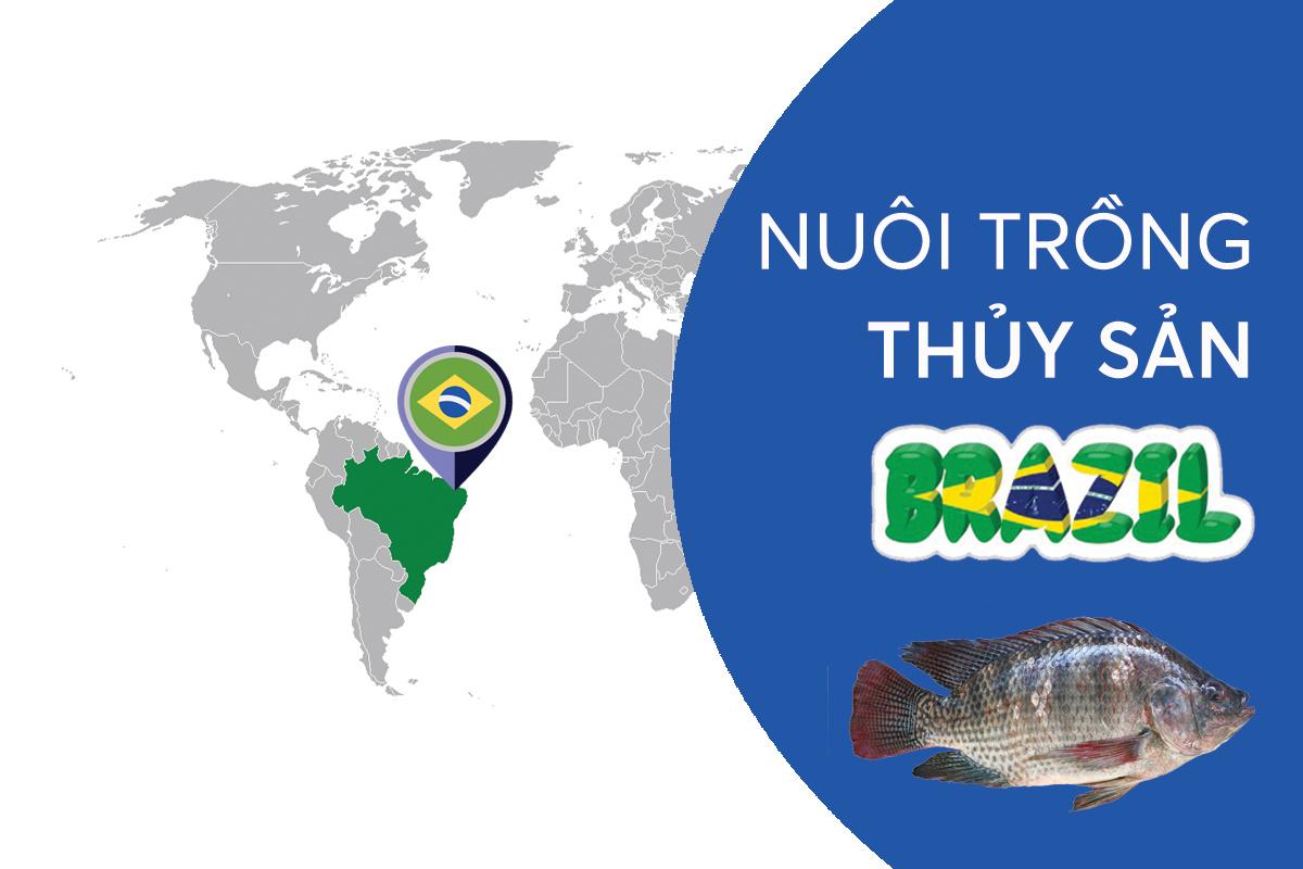 Nuôi trồng thủy sản Brazil