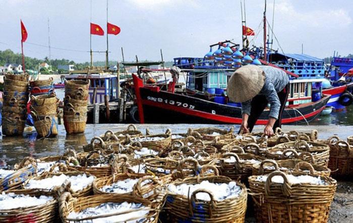 Cảng cá Đà Nẵng