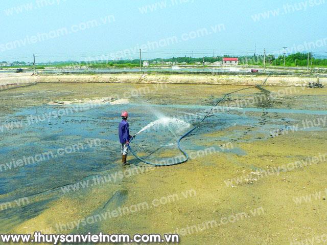 Làm sạch đáy ao nuôi tôm bằng máy bơm áp lực cao - Ảnh: Quốc Minh