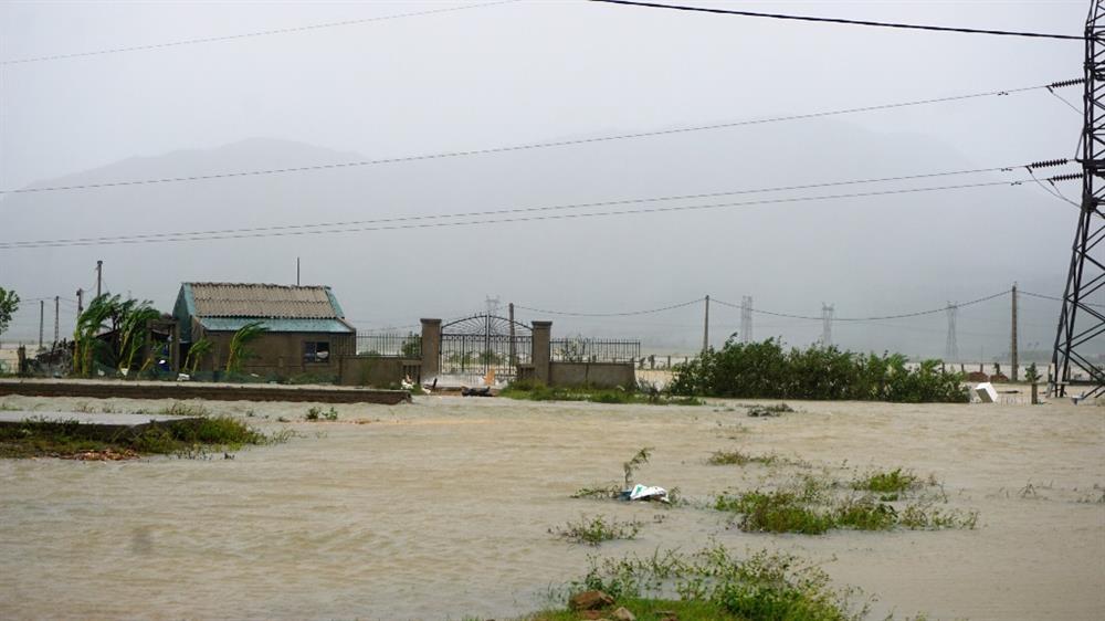 Hơn 16000 ha nuôi trồng thủy sản thiệt hại do bão số 10
