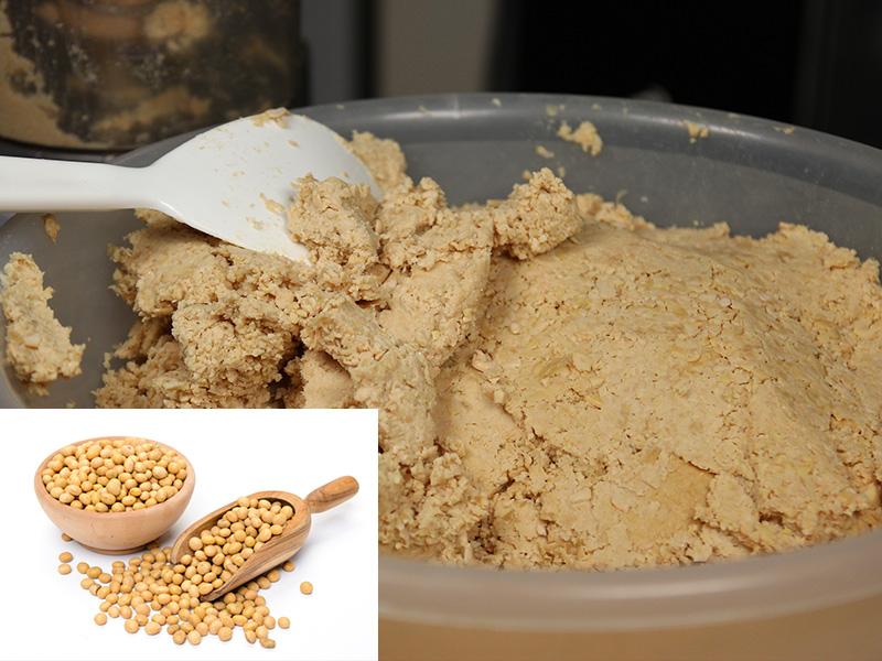 Bột đậu nành lên men tăng đáp ứng miễn dịch của tôm