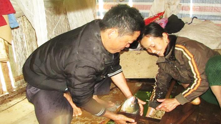 Cá lồng sạch Con Cuông sẵn sàng phục vụ Tết
