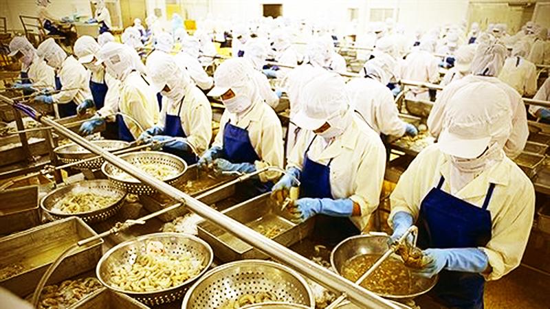 Việt Nam chủ yếu xuất khẩu tôm chân trắng sang Bỉ