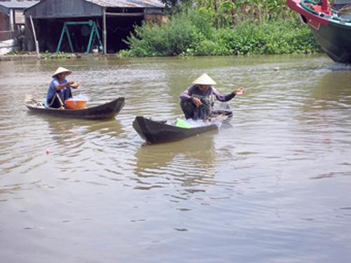 Image result for Vam Sông Ô Môn