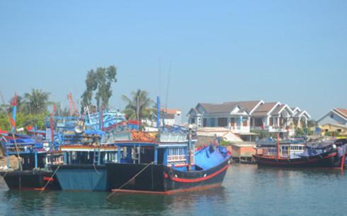 Hậu cần nghề cá ở Quảng Ngãi vừa thiếu lại vừa yếu