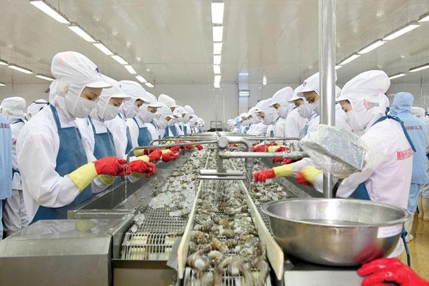 Giá cá tra, tôm nguyên liệu tăng mạnh vì thiếu cung cho cuối năm