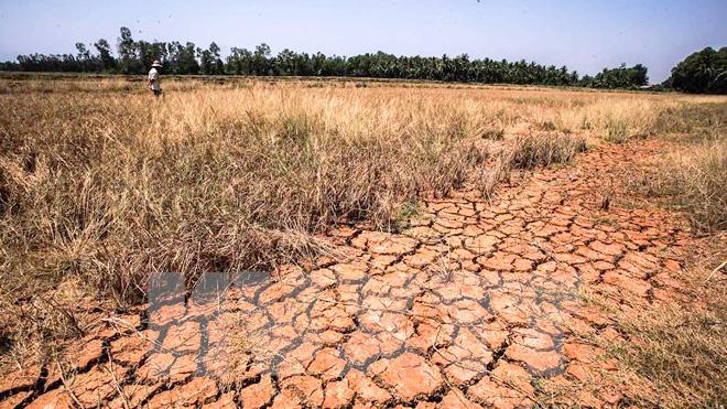 Kết quả hình ảnh cho thủy điện đang giết chết đồng bằng sông cửu long