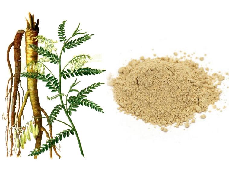 Vai trò Astragalus polysaccharides (APS) trong nuôi trồng thủy sản