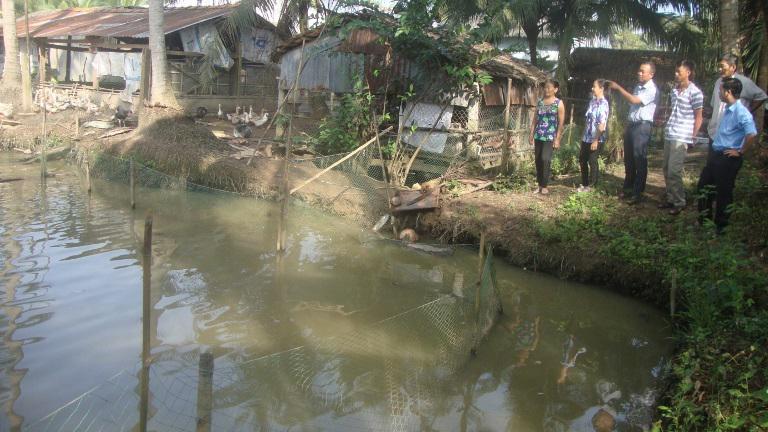 Trà Vinh: Hướng đi mới cho người chăn nuôi