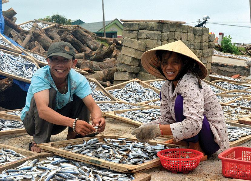 nghề sơ chế cá