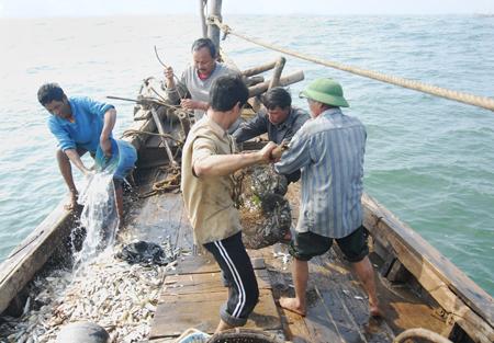 Kết quả hình ảnh cho ngư dân