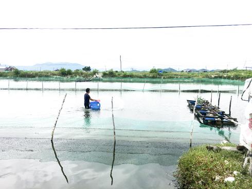 Nuôi trồng thủy sản, Cẩn trọng diễn biến bất thường của thời tiết