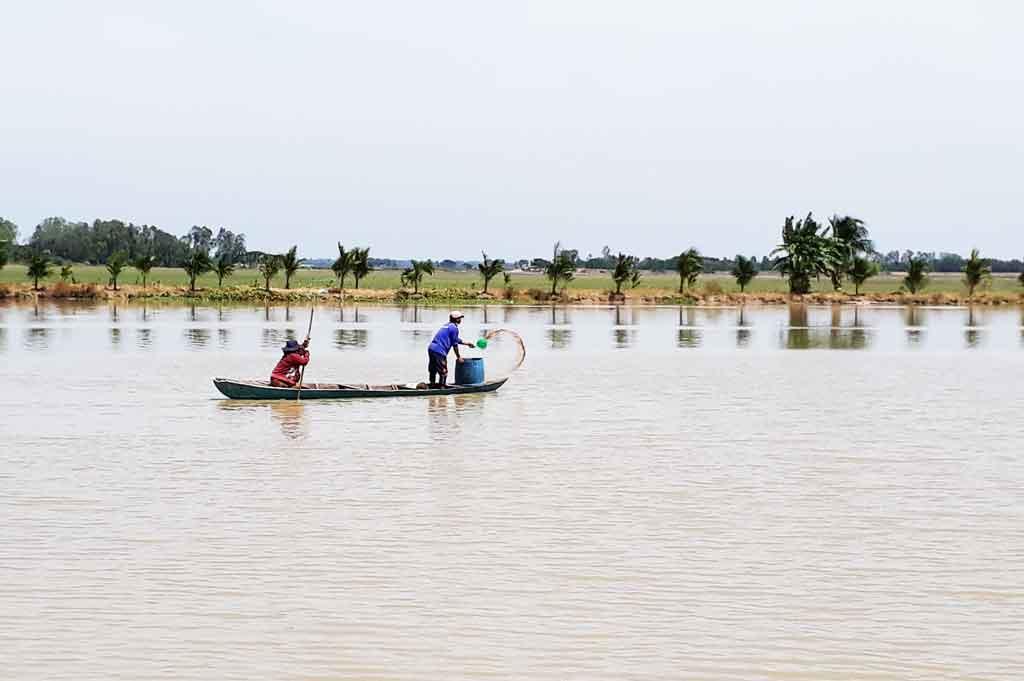 Vùng Đồng Tháp Mười: Cần phát huy thế mạnh nuôi thủy sản