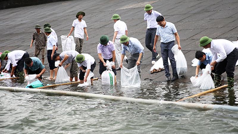 Kinh nghiệm từ Nhật Bản bảo tồn nguồn lợi