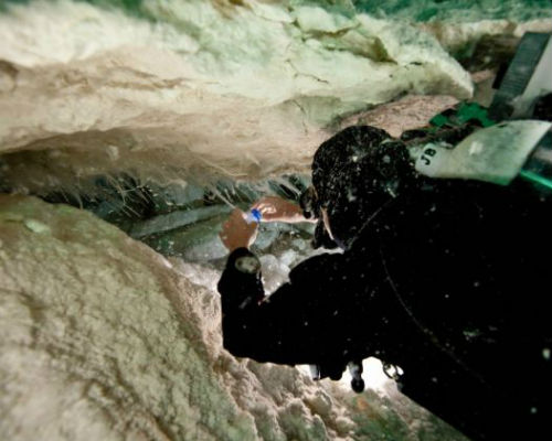 Các thợ lặn Australia đã phát hiện ra hang động có lớp chất nhày kỳ lạ nằm sâu dưới biển tại vùng Nullarbor.