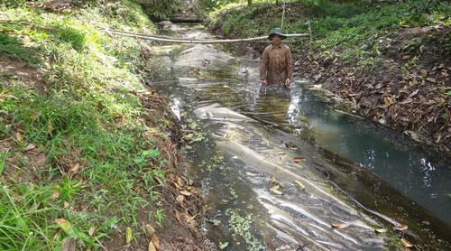 Túi trữ nước ngọt của người dân xã Thanh Bình, huyện Vũng Liêm, tỉnh Vĩnh Long dùng trong mùa hạn, mặn