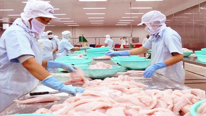 Sụt giảm xuất khẩu cá tra kỷ lục tại Tây Ban Nha