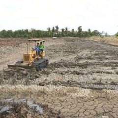 Sóc Trăng: Rộn ràng chuẩn bị vụ tôm nước lợ 2018
