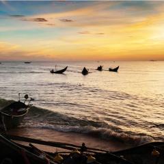 Mùa sứa biển Quảng Nam