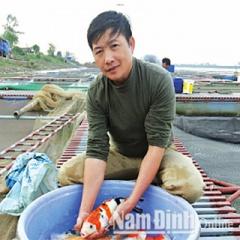 Kinh nghiệm chuyển đổi cá Koi từ bể nhà ra sông lớn