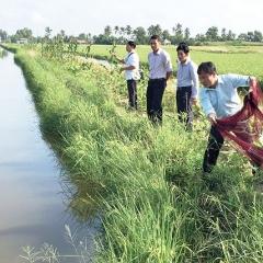 Nhiều hướng đi mới và cơ hội làm giàu cho nông dân