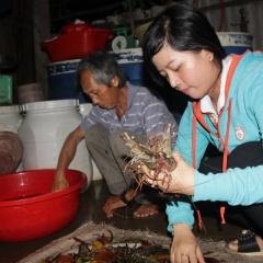 Lợi ích kinh tế từ nuôi tôm sinh thái