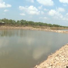 Sóc Trăng đã thả nuôi 2.700 ha tôm nước lợ