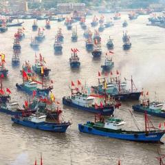 Trung Quốc hướng đến loại bỏ IUU?