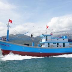 Quãng Ngãi: Kiểm soát tất cả tàu cá ra, vào bến